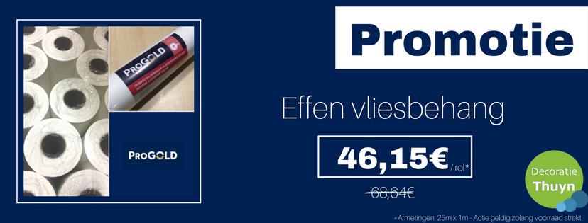 Decoratie Thuyn- Progold Promo